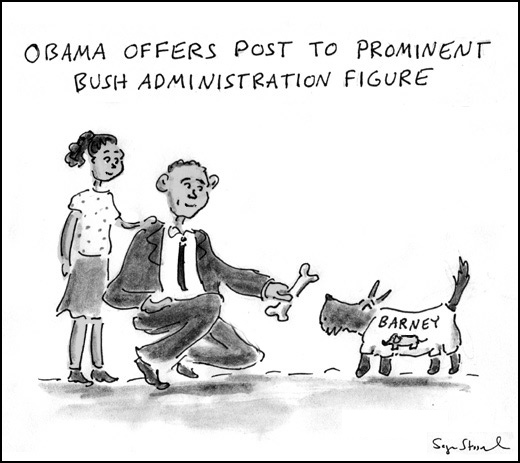obama presidency transition cabinet post
