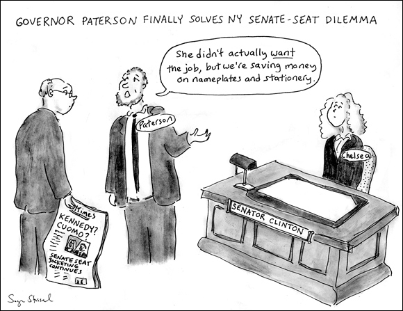 cartoon about caroline kennedy and ny senate seat