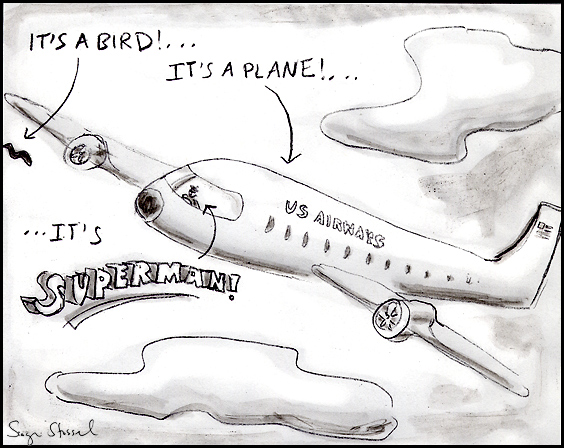 plane land in hudson river cartoon