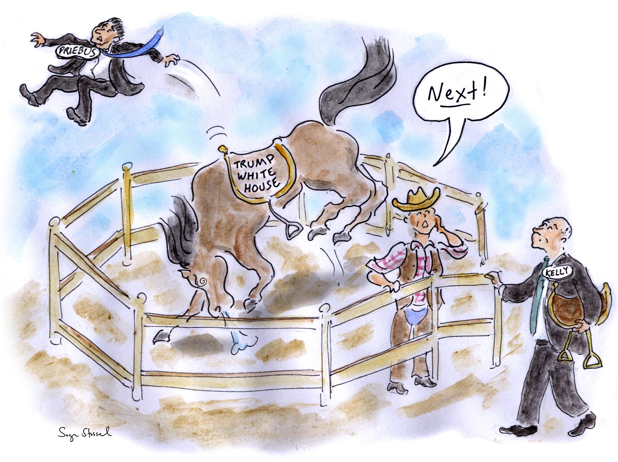 reince priebus, john kelly, chief of staff, trump white house chaos, order, cartoon