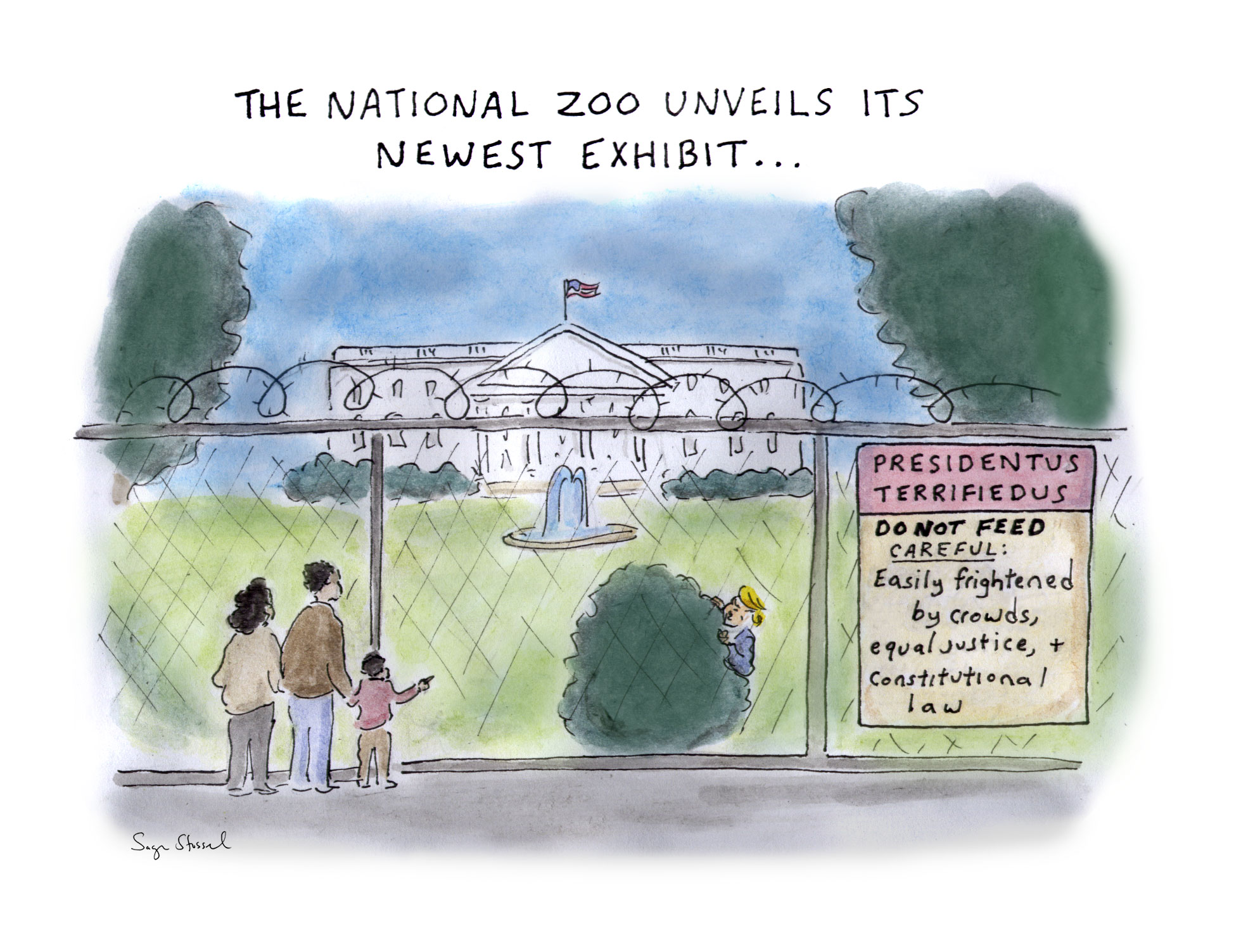 trump, hide, bunker, black lives matter, we the people, president, national zoo, coward, white house fencing, protests, cartoon, sage stossel